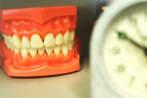 dental-model-crop1